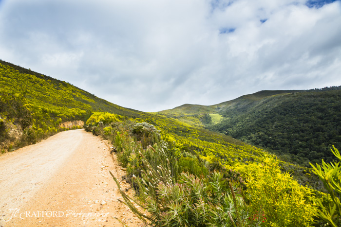 R339 Prince Alfred pass