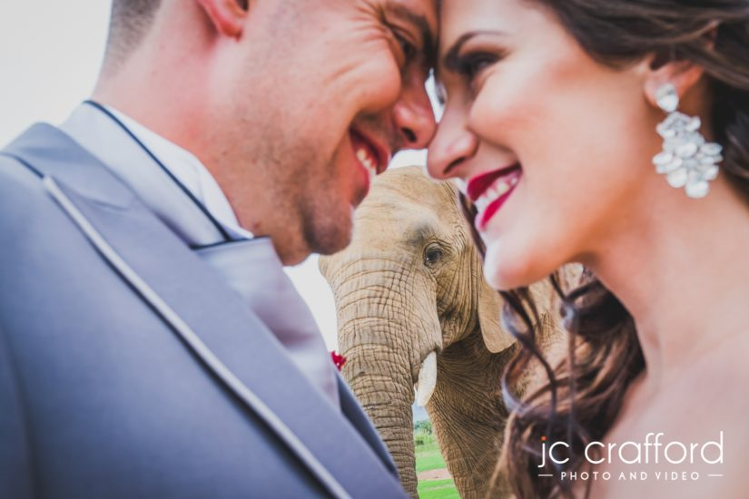 Askari Game Lodge Wedding Photography and Photographer