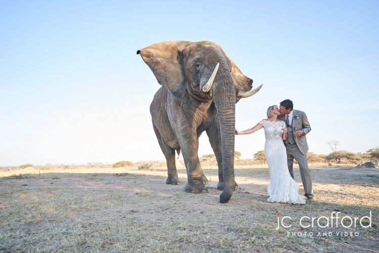 JC-Crafford-Wedding-Photographer-Portfolio-1-115