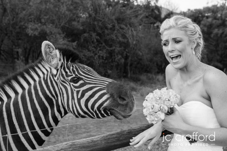 JC-Crafford-Wedding-Photographer-Portfolio-1-298