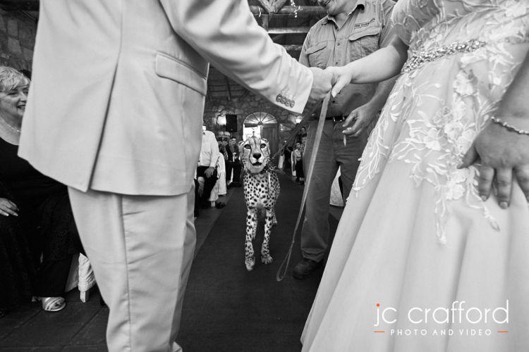 JC-Crafford-Wedding-Photographer-Portfolio-1-88