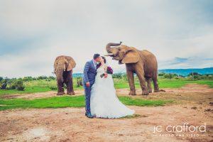 JC-Crafford-Wedding-Photography-Askari-Game-Lodge1042-300x200