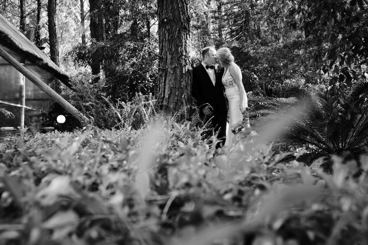 JCCrafford Photo & Video Forest Walk Wedding Photography ZC 39