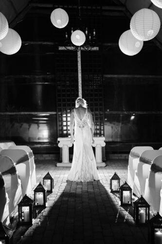 JCCrafford Photo & Video Forest Walk Wedding Photography ZC 55