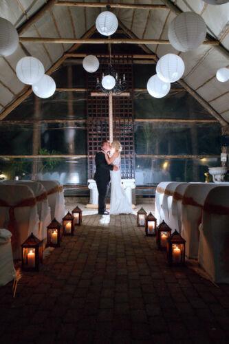 JCCrafford Photo & Video Forest Walk Wedding Photography ZC 56